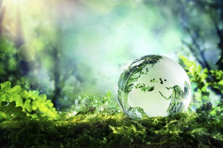 Europe - crystal globe resting on moss in a forest